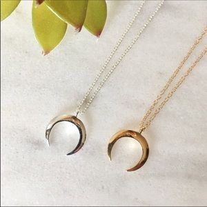 Silver Crescent Horn Necklace